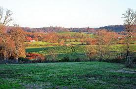 novemberfields