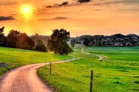pathswanderingwherewill