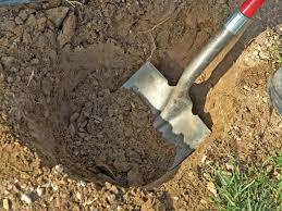 diggingdirtholeafterlunch