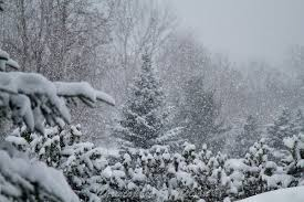 snowsqualls