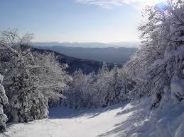 wintervermontstart