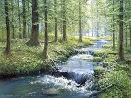 streambanks
